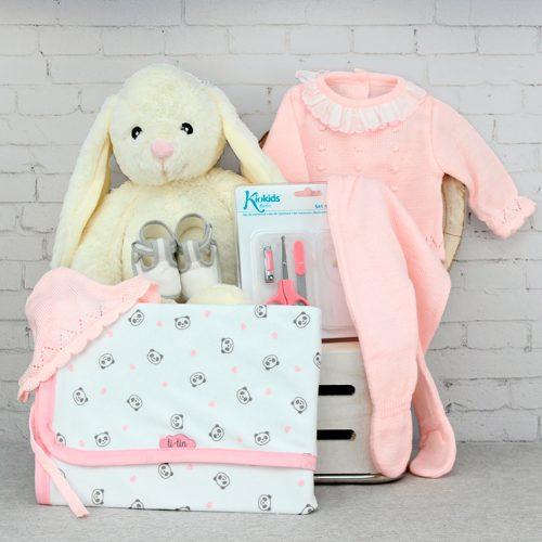 canastilla para bebes, cesta de regalos
